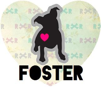 FOSTERHEART