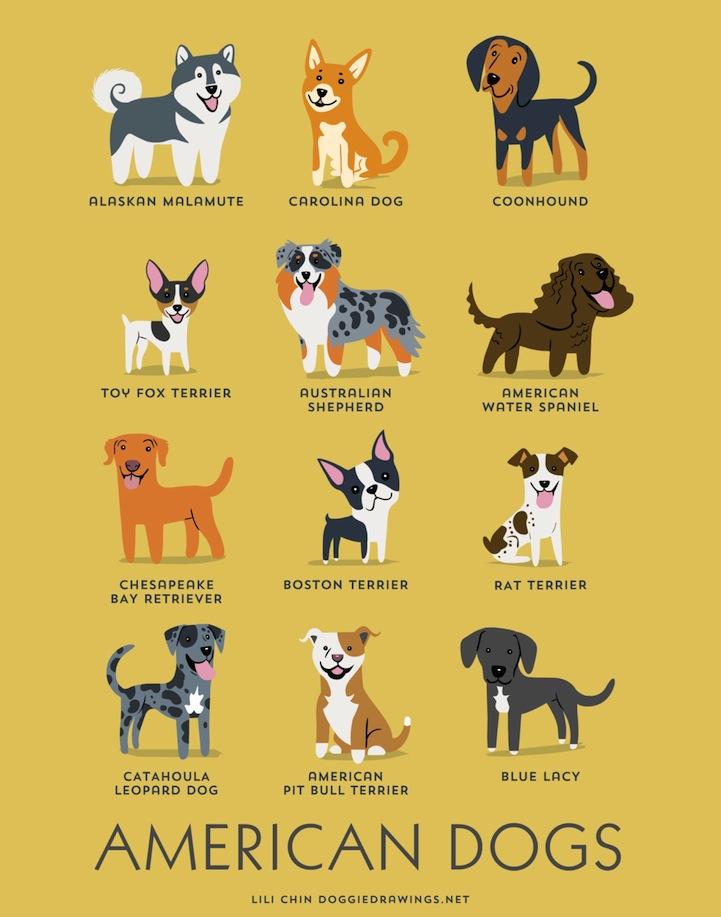 doggiedrawings10
